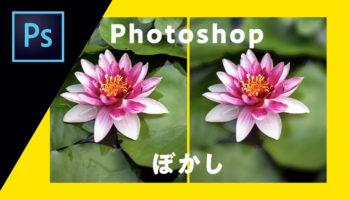 Photoshopで画像にぼかしをいれる方法(全体、顔、境界線、背景)